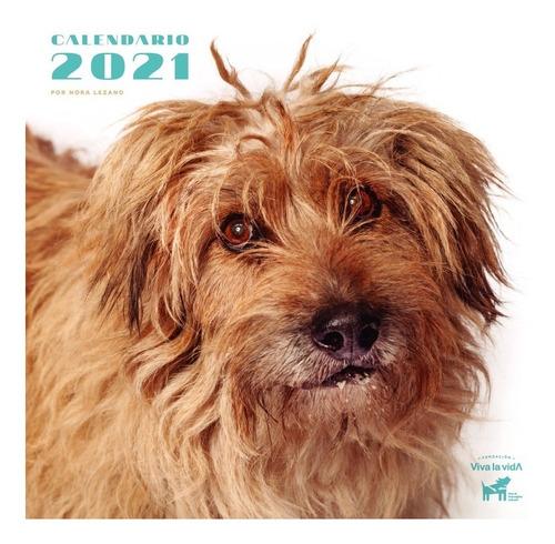 ¡promo! Calendario 2021 De Fundación Viva La Vida X 10