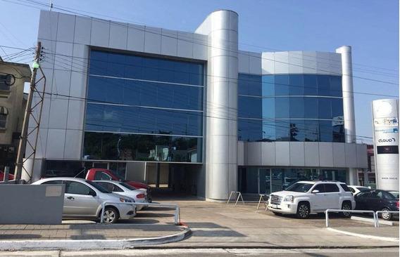 Oficina En Renta (edificio Ergon) En Fracc. La Florida, Tampico