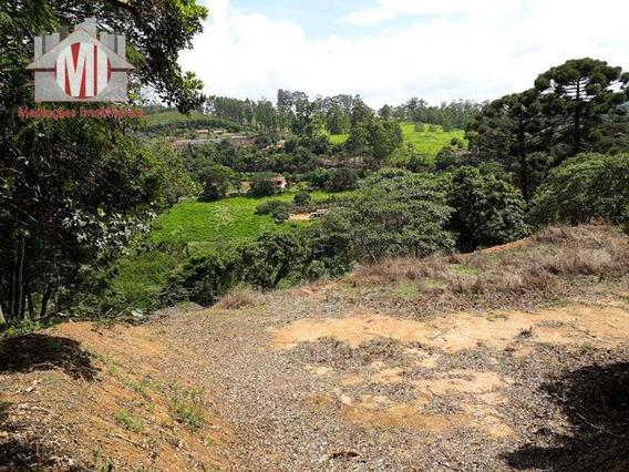 Terreno À Venda, 4500 M² Por R$ 90.000 - Rural - Pedra Bela/sp - Te0190