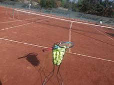 Clases De Tenis - Entrenador Clases Particulares Y Grupales