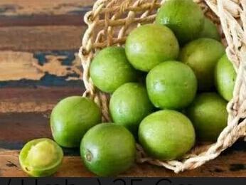 10 Sementes D Pinha, 10 Sementes D Umbu, 10 Sements D Licuri