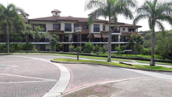 Clayton Grandioso Apartamento En Alquiler Panamá