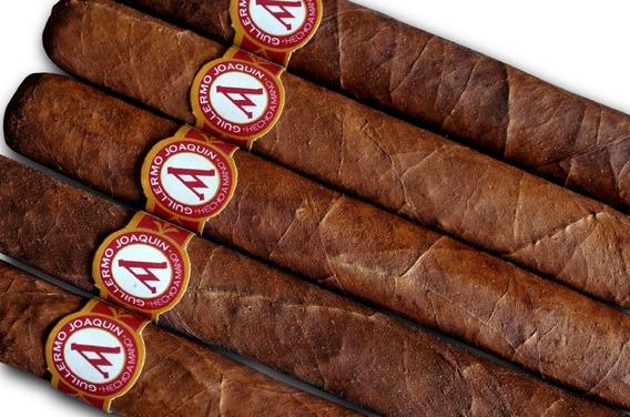 Habanos / Cigarros / Puros Robustos Guillermo Joaquín X10u.