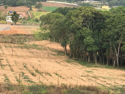 Y Venha Conferir Terrenos De 1000m² C/portaria E Bosque