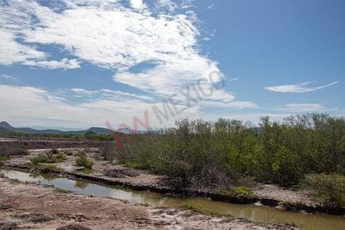 Imagen 1 de 6 de Excelente Oportunidad De Tierras Colindantes A La Marisma  Y Canal La Draga .