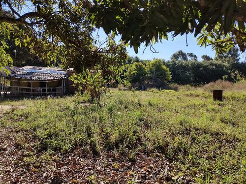 Chácara De 10000m², Núcleo Rural Monjolo - Recanto Das Emas