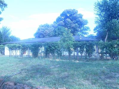 Vendo Finca Ganadera Y Agricola A 32 Km De Pto Gaitan Meta