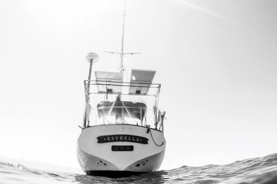 Velero / Sailboat