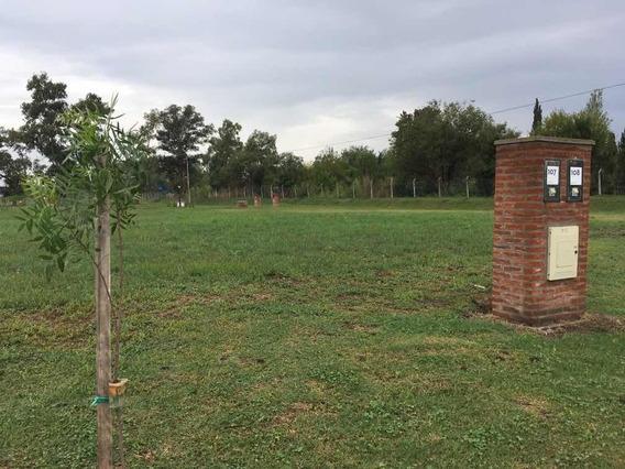 Terreno En Pilar Del Este