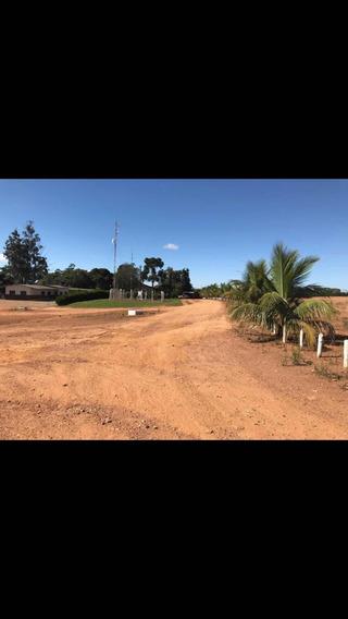 Fazenda De Café Região Triângulo Mineiro