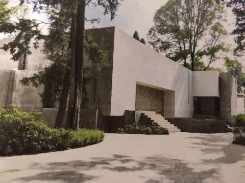 Coyoacan Centro Histórico A.v
