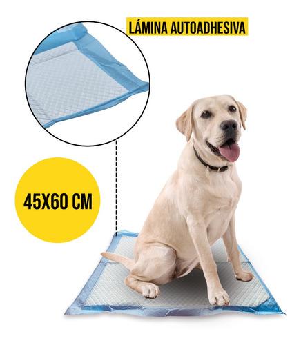 Imagen 1 de 8 de 100 Pañales Sabanillas Mascotas 45x60 Cm Perro Entrenamiento
