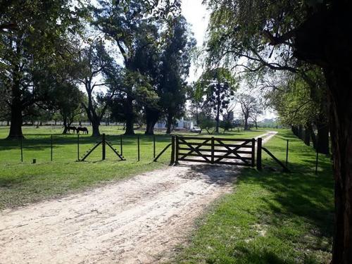 Hermosa Casa De Campo Con Pileta, Arboleda Y Caballos !!