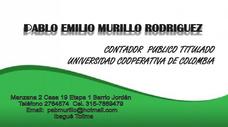 Contador Publico Titulado