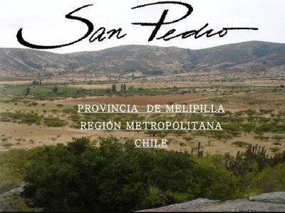 Parcela San Pedro De Melipilla