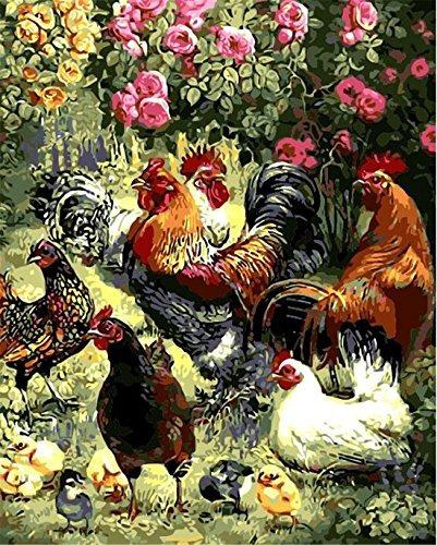 Gallo Gallina Pollitos Pintura Por Números Kits Para Adul