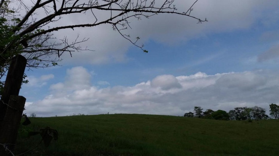 Terreno En Venta En Chorrera 20-6709 Emb