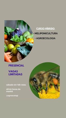 Imagem 1 de 4 de Curso De Agroecologia E Meliponicultura