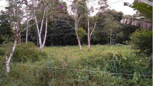 Terreno De Chácara Com 1000 Mts Em Itanhaém - 4445 | Npc