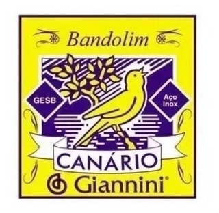 Set Cuerda Para Mandolina Gianini Canario 8 String