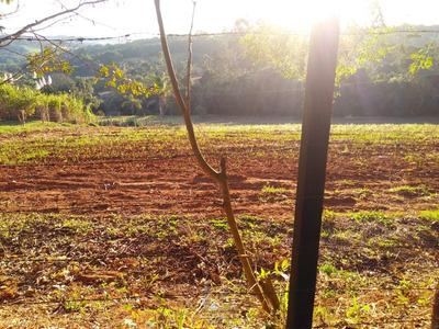 Terreno Para Chácara Campo Novo Bragança Paulista - Te0136-1