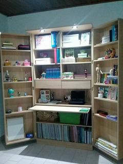 Biblioteca Organizadora Plegable Con Escritorio