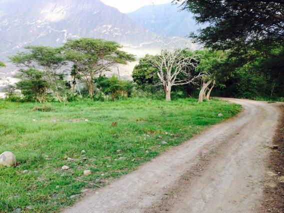 Terrenos En Yunguilla Lacay Grande 2700 / 2800 M2 Plano