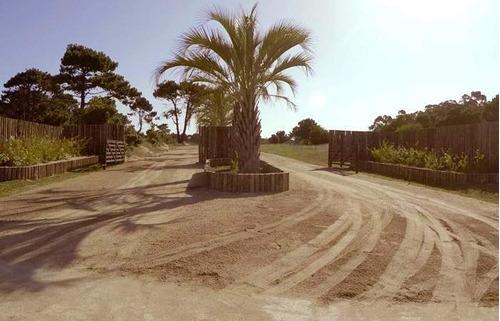 Imagen 1 de 6 de Venta Lote- Pinar Del Faro (playa Brava)- José Ignacio-uruguay