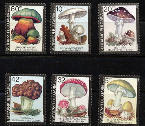 Estampillas Bulgaria 1991 Hongos Serie Completa Mint