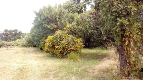 Imagem 1 de 17 de Área À Venda, 65347 M² Por R$ 5.499.000,00 - Pedra Branca - Campinas/sp - Ar0272