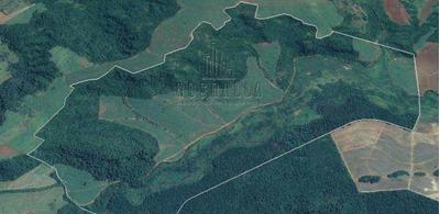 Fazenda, Centro, Ibaté - R$ 13.106.880,00, 57,22m² - Codigo: 1722449 - V1722449