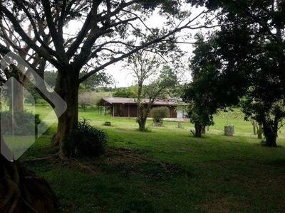 Sitio - Aguas Claras - Ref: 199597 - V-199597