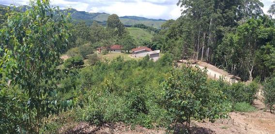 Fazenda Em Salesópolis Plantio R$ 65.000,00 Cada Alqueire