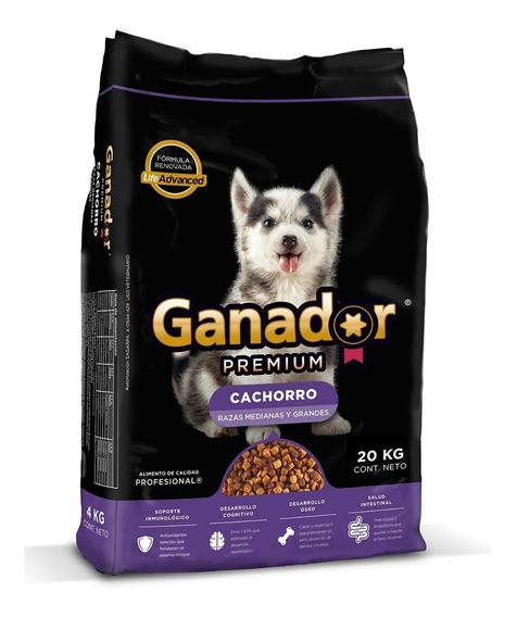 Ganador Premium Alimento Perro Cachorro Bulto 20 Kg