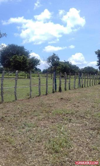 Haciendas - Fincas En Venta 32.000 M2 Frente Vía Asfaltada