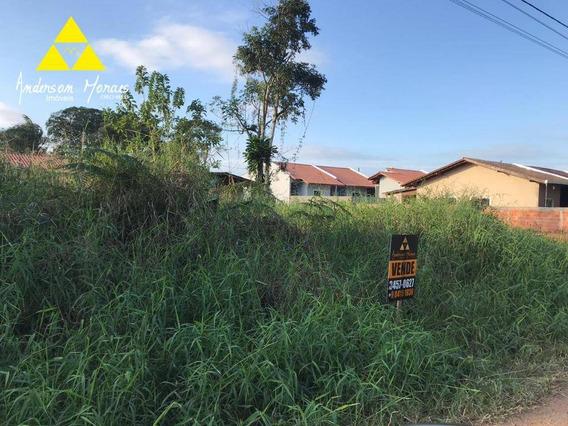 Terreno À Venda, 348 M² Por R$ 65.000 - Quinta Dos Açorianos - Barra Velha/sc - Te0191