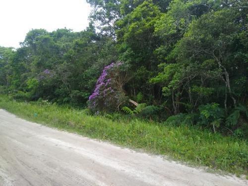 Imagem 1 de 3 de Terreno No Litoral À Venda Em Itanhaém, 1200 M² - 7528 Lc
