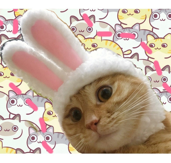 Lindo Pet Conejo Orejas Peluca Tapa Sombrero Para Gato Traje