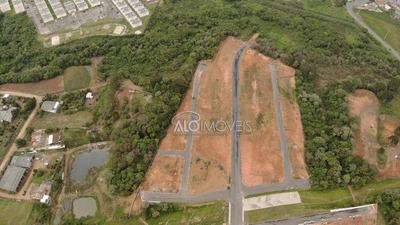 Terreno À Venda, 151 M² Por R$ 81.650 - Eucaliptos - Fazenda Rio Grande/pr - Te0071
