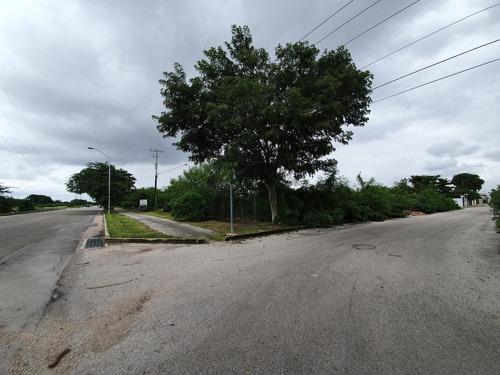 Imagen 1 de 11 de Terrenos En Venta Sobre Avenida En Calle 70 De Caucel