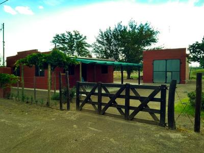 Finca 12hs Con Viñedo, Hermosa Casa Y Galpon