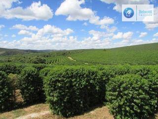 Fazenda À Venda, Zona Rural, São Tiago. - Fa0027