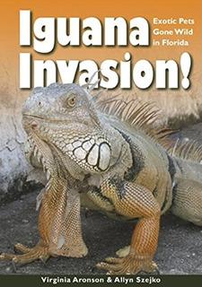 Invasión De Iguanas Mascotas Exóticas En Libertad En La F