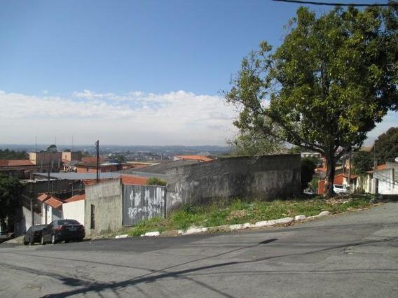 Terreno Em Jardim Carmel, Cotia/sp De 0m² Para Locação R$ 7.000,00/mes - Te319176