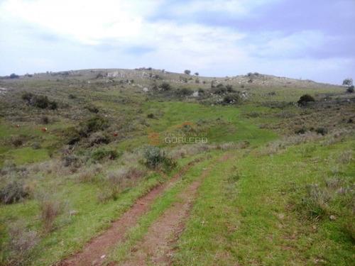 Campo En Venta En Uruguay, Lavalleja A Pocos Km De Minas- Ref: 22035
