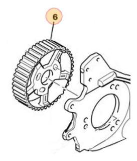 Engranaje Piñon Bomba Inyección Peugeot Expert 1.9 D