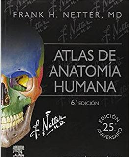 Atlas De Anatomía Humana - 6° Edición - Frank Netter