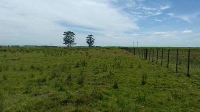 Campo En Venta En La Cruz
