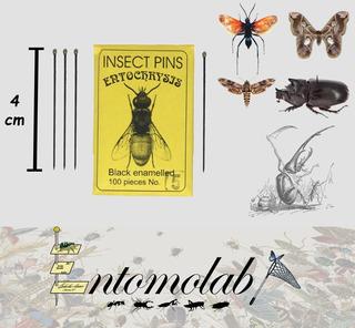 Alfileres Entomológicos Entochrysis Negros #5 Insectos