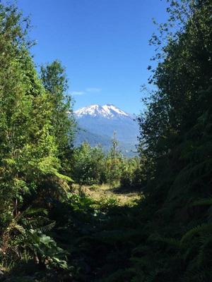 Propiedad En Puerto Montt - Cercano A Reserva Nacional Alerce Andino